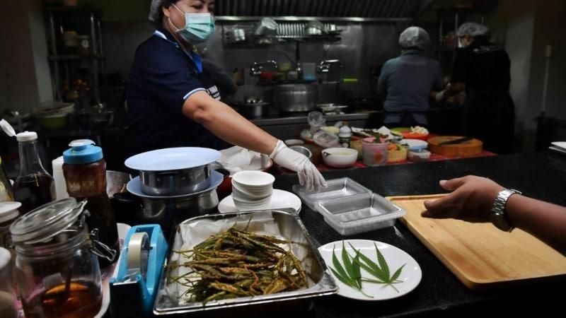 Thai Restaurant's Bustling Kitchen