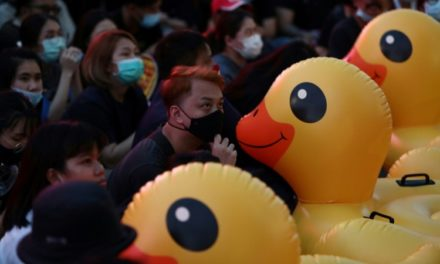 Flipping the Bird: Rubber Ducks Become the Symbol of Thai's Protests
