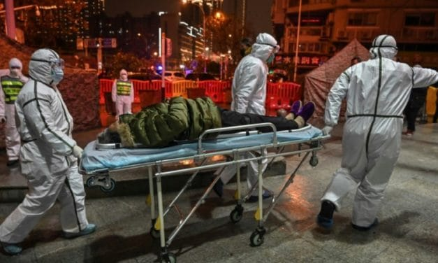 A Year after First Death in China, Coronavirus Source Still a Puzzle