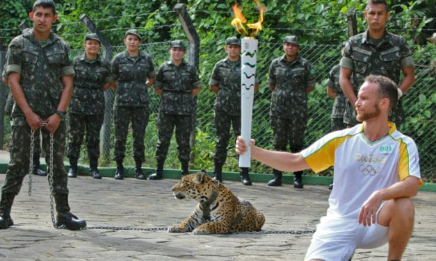 Jaguars and Underpants: When Olympic Torch Relays Go Wrong
