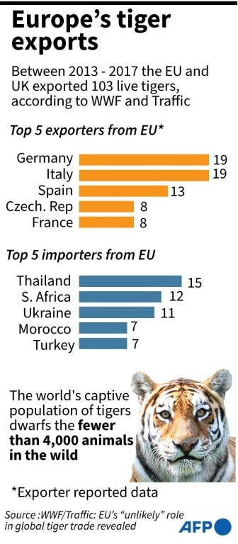Tiger Exports from Europe