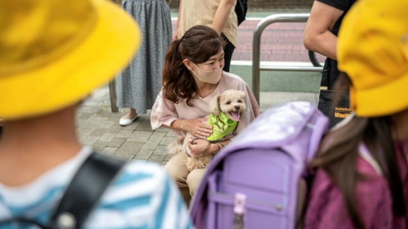 Tokyo's Real Life Paw Patrol