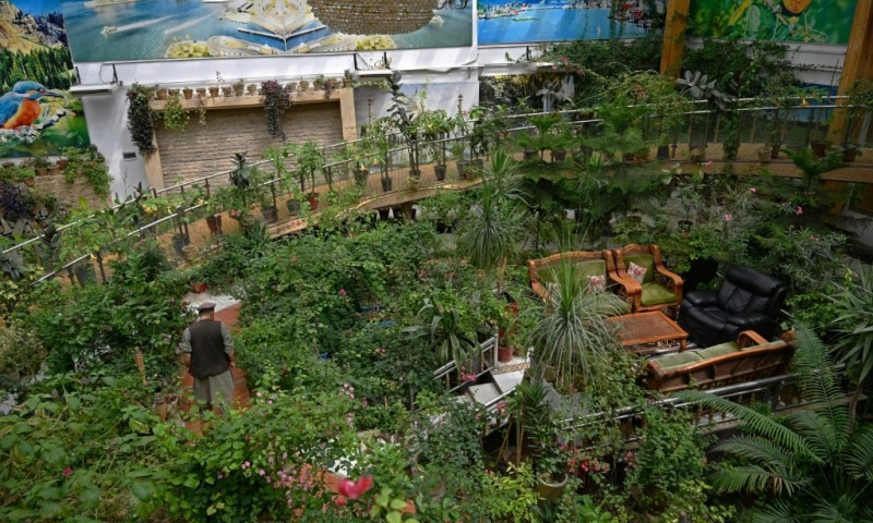 Tropical Greenhouse of Dostum's Kabul Mansion