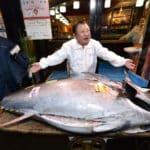Rare Bluefin Tuna Fetches $1.8 Million at Tokyo's Auction
