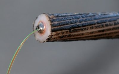 New Fiber-Optic Cable Backed by Google and Facebook May Bypass Hong Kong