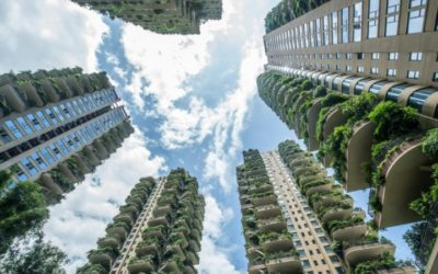 Eco-Paradise? Plants Overrun China's Green Housing Project