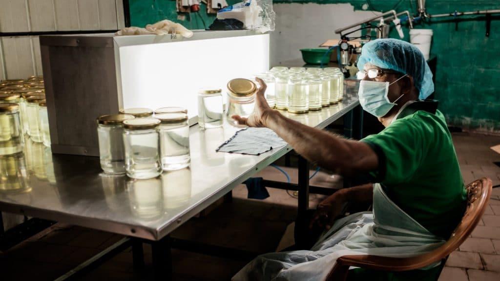 Virgin Coconut Factory - Sri Lanka ©Michal Bocek