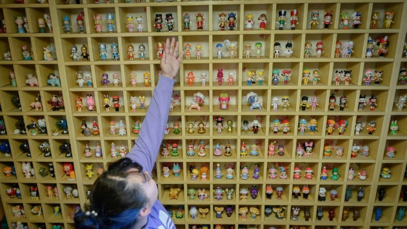 Wang Zhaoxue Toy Collections