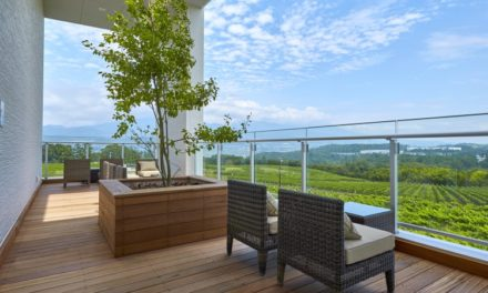 Top Wineries to Visit on Your Next Trip to Asia