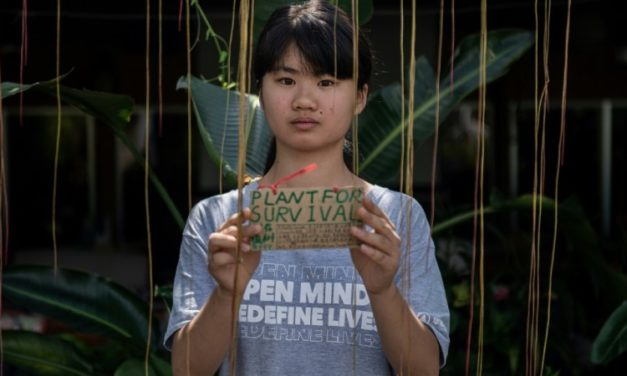 Inspired by Greta Thundberg: China's Teenage Climate Warrior Fights an Uphill Battle